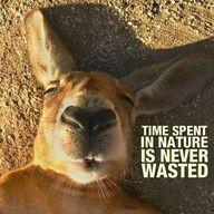 Време на отпадъците да се разградят в природата