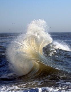 енергия от приливите и отливите
